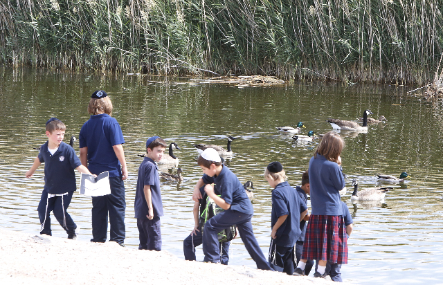 Students from Yeshiva Day School in Las Vegas are seen during their science field trip at Cornerstone Park at 1600 Wigwam Pkwy in Henderson on Wednesday, Sept. 30, 2015. (Bizuayehu Tesfaye/Las Veg ...