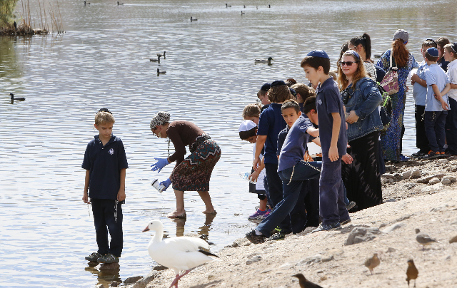 Students from Yeshiva Day School in Las Vegas watch as their teacher Rachel Cutler, second left, takes a sample of water from the Cornerstone Park pond during their science field trip at 1600 Wigw ...