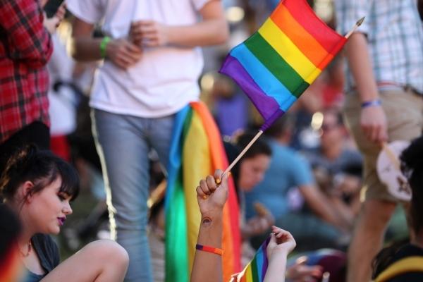 Elizabeth Borek waves her flag during the Pride Festival outside of the Clark County Government Center in Las Vegas Saturday, Sept. 19, 2015. ERIK VERDUZCO/LAS VEGAS REVIEW-JOURNAL Follow him @Eri ...