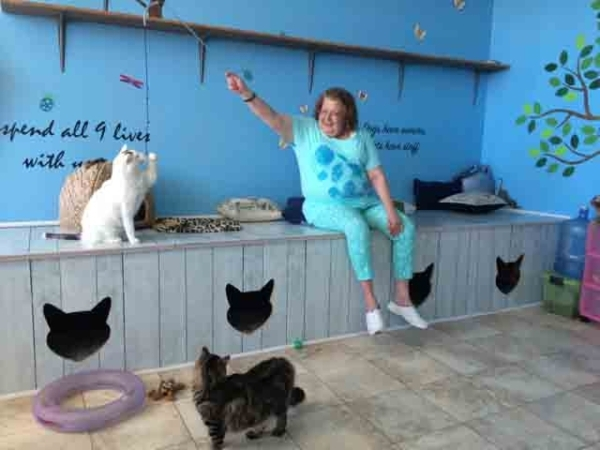 Patty Kreckman plays with cats at Hearts Alive, a rescue facility at 1750 S. Rainbow Blvd, Suite 4. Kreckman, a cancer survivor, is the house sitter for some of the animals rescued by the new nonp ...