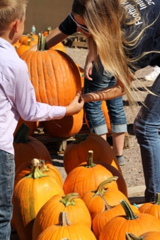 People take take part in the First Henderson United Methodist Church's annual Pumpkin Patch event in 2014. The event is planned again this year from Oct. 11-31 at the church 609 E. Horizon D ...