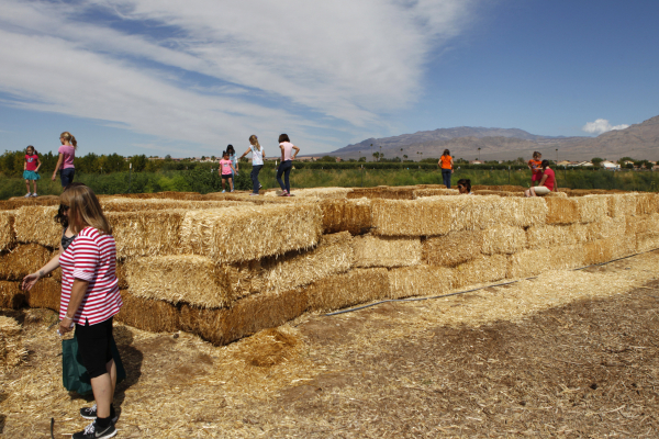 Children play in the hay maze at Gilcrease Orchard in Las Vegas Saturday, Sept. 27, 2014. The orchard opened their pumpkin patch for picking. (Erik Verduzco/Las Vegas Review-Journal)