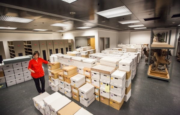 Las Vegas Natural History Museum Director Marilyn Gillespie talks about the hundreds of boxes of artifacts loaned to the museum by the Bureau of Land Management, at the museum's collections  ...
