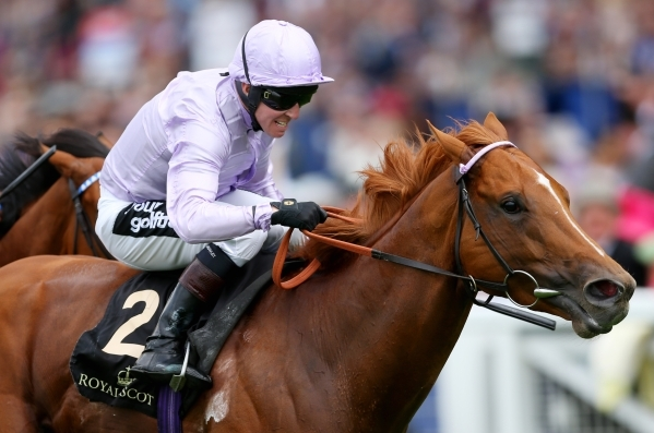 Horse Racing - Royal Ascot - Ascot Racecourse - 17/6/15 Dutch Connection ridden by Jim Crowley wins the 14.30 Jersey Stakes Action Images via Reuters / Matthew Childs Livepic  - RTX1GWJH