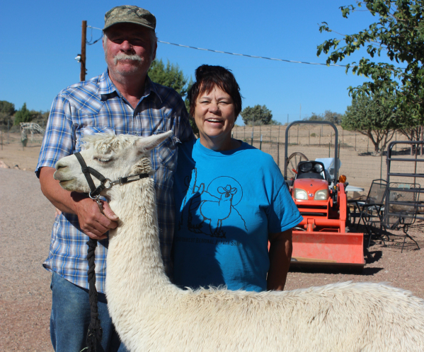 Ron and Anna Nyberg pose with Ted, an alpaca at their ranch, located outside of Kingman, Ariz. (Deborah Wall/Special to View)