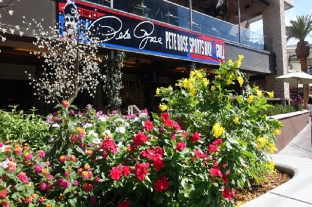 Pete Rose bar (Norm Clarke/Las Vegas Review-Journal)