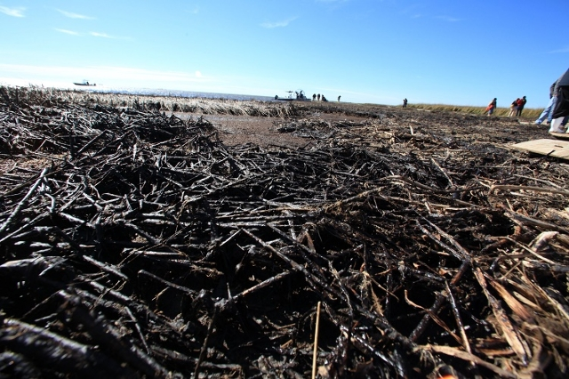 Louisiana Department of Wildlife and Fisheries (LDWF) Secretary Robert Barham and Plaquemines Parish President Billy Nungesser toured a portion of Louisiana's coastline still heavily oiled b ...