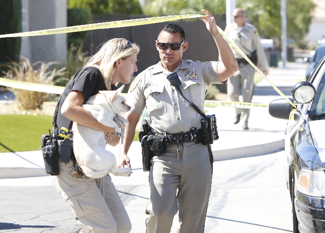 A Clark County animal control officer carries a dog that was found in the house where three people were found dead after a shooting in a southeast valley neighborhood Friday, Oct. 2, 2015 in the 7 ...