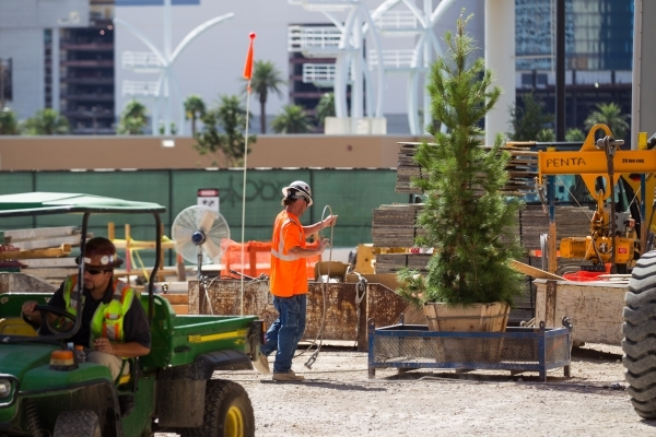 "A construction worker prepares the ceremonial tree before the ""topping off"" ceremony at the Lucky Dragon hotel-casino in Las Vegas on Friday, Sept. 11, 2015. Chase Stevens/Las Vegas Revi ..."