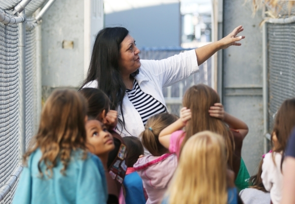 Volunteer and guide Sandra Salinas, center, speaks to Girl Scouts Troop 109 members in the Flight Aviary at Gilcrease Nature Sanctuary Saturday, Oct. 24, 2015, in Las Vegas. The sanctuary, located ...