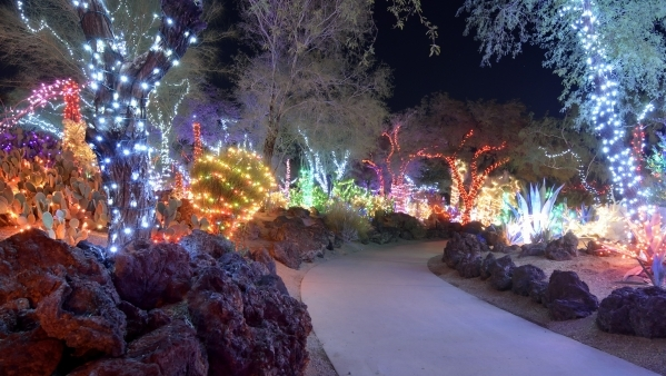 Part Of The Holiday Lights Display Is Shown At Ethel M Cactus Garden 2