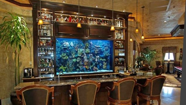 "Wayde King and Brett Raymer, hosts of Animal Planet's ""Tanked,"" built this  aquarium for a home's bar.  COURTESY"