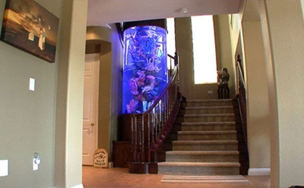 Anaheim Angels player Shane Victorino and his wife, Melissa, have a tank with yellow tangs and bluefish. The coral insert replicates what would be seen in Hawaii.  DAVID REISMAN/REAL ESTATE MILLIONS