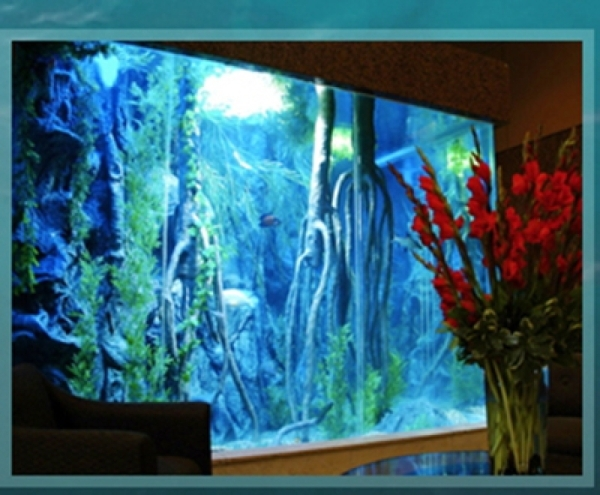 Acrylic Tank Manufacturing builds home aquariums and ponds.   COURTESY