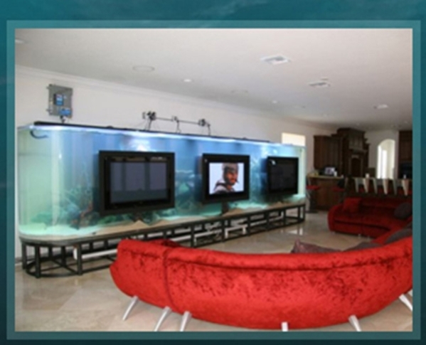"Celebrity homes are featured on Animal Planet's ""Tanked.""   COURTESY"