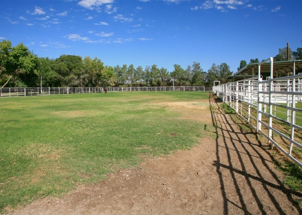 The ranch has several pastures. ELKE COTE/REAL ESTATE MILLIONS
