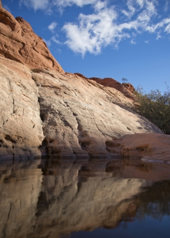 A pool of water from recent rainfall is seen inside the scenic loop of the Red Rock Canyon National Conservation Area on Monday, Nov. 16 2015. Red Rock is celebrating its 25th anniversary as a nat ...