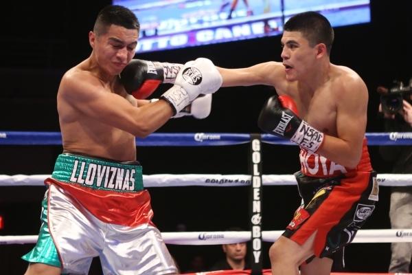 Diego De La Hoya, right, lands a right punch against Giovanni Delgado in their featherweight boxing bout at the Hard Rock casino-hotel in Las Vegas Friday, Nov. 20, 2015. Diego De La Hoya won by u ...