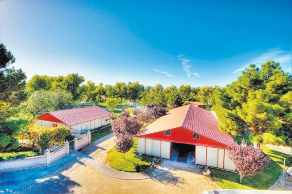 The Primm Estate Has An Equestrian Center COURTESY