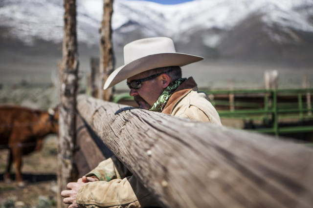 Rancher J.J. Goicoechea is shown April 29, 2014, on his ranch located north of Eureka. The fourth-generation cattleman runs the ranch with his father. (Jeff Scheid/Las Vegas Review-Journal)
