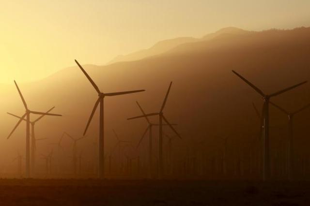 Windmill farm (Sam Mircovich/Reuters)