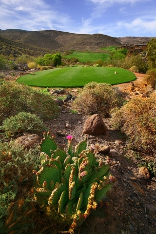 The  Dragon Ridge Golf Course is surrounded by desert mountains. COURTESY