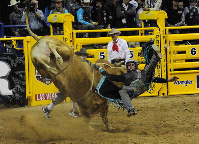 Saddle bronc rider Tyrel Larsen from Inglis, Manitoba, is bucked from his bull during the first go-round of the 2015 Wrangler National Finals Rodeo at the Thomas & Mack Center in Las Vegas  Th ...
