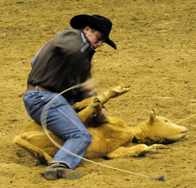 Ryan Jarrett from Comanche, Okla., competes in tie-down roping ropes a calf to a time 8.20 seconds score of 86 during the first go-round of the 2015 Wrangler National Finals Rodeo at the Thomas &a ...