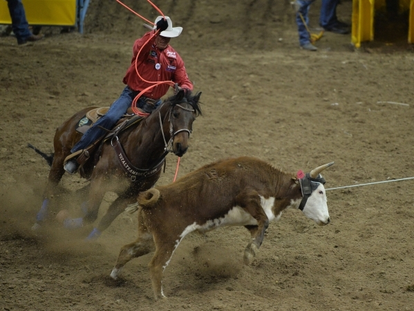 Clay O'Brien, Cooper of Gardenerville, Nev., ropes a steer in the team roping competition on the second day of the 2015 Wrangler National Finals Rodeo at the Thomas & Mack Center in Las  ...