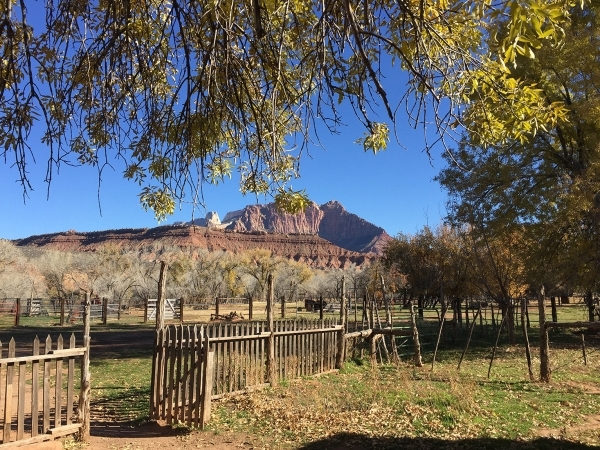 The view looking north from the historic Grafton townsite in Utah is ZionþÄôs Mount Kinesava. Deborah Wall/Special to View
