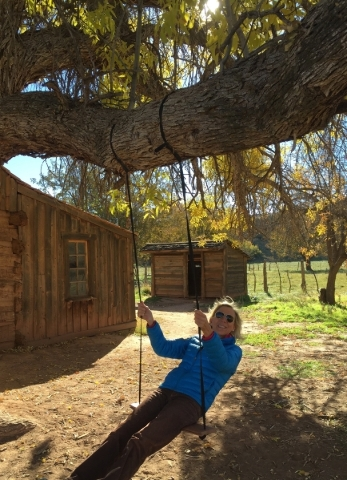 The author enjoying the tree swing at the 1879 Louisa Marie Russell Home in Grafton, Utah. Charlotte Wall/Special to View