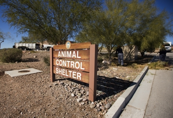 Boulder City Animal Control Shelter, 810 Yucca St., is shown Tuesday, Dec. 1, 2015. A now-retired Boulder City animal shelter supervisor was under criminal investigation earlier this year for ille ...