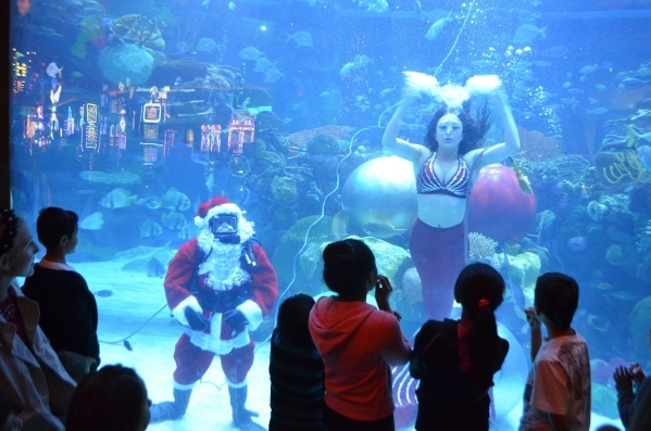 Underwater Santa, aka Patrick McCormick, and his mermaid interact with visitors at the Silverton. Ginger Meurer/Special to View
