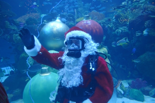 Underwater Santa, aka Patrick McCormick, interacts with visitors at the Silverton. Ginger Meurer/Special to View