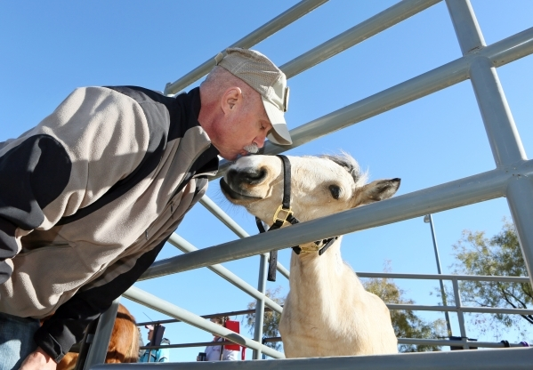 Mark Christianson gives a kiss to Darcy Annie, a 4-month-old buckskin filly, during an adoption event outside the Bureau of Land ManagementþÄôs Southern Nevada District Office on Saturday ...