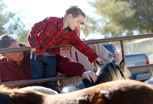 Matthew Mackie, 4, center, with his grandfather Scott, left, and father Justin, right, pet Darcy Annie, a 4-month-old buckskin filly, during an adoption event outside the Bureau of Land Management ...