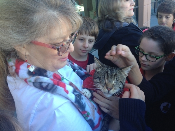 Christy Santoro, left, from the Poppy Foundation holds Tommy Cat Santoro for fourth-grade students Dec. 18 at Founders Academy of Las Vegas, 4025 N. Rancho Drive. Students raised more than $200 fo ...