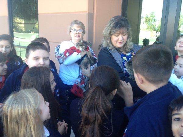 Christy Santoro, left, and Linda Newman, right, from the Poppy Foundation gather Dec. 18 with fourth-grade students at Founders Academy of Las Vegas. The Poppy Foundation offers frail felines a pl ...