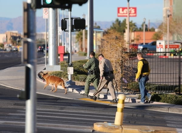 A K-9 team turns onto Las Vegas Boulevard from Serene Avenue as they look for the shooter of a Las Vegas police officer at the Emerald Suites, 9145 Las Vegas Blvd. South, near the intersection of  ...