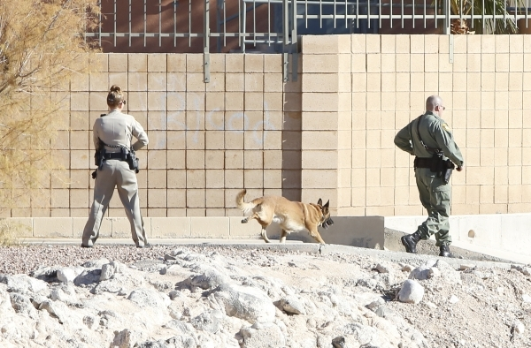 A Las Vegas metro police officer and a K-9 officer take cover outside a south valley long-term motel as they are looking for the shooter of a Las Vegas police officer at the Emerald Suites, 9145 L ...