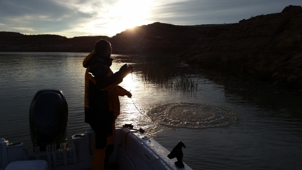 Nevada Fishing Report Dec 31 2015 Las Vegas Review
