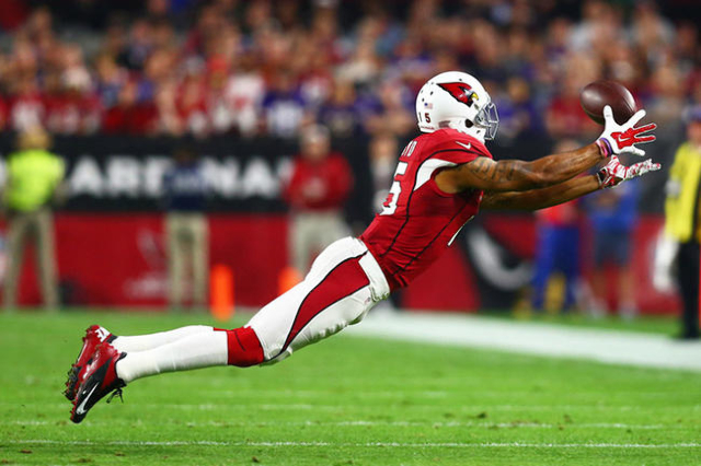 Dec 10, 2015; Glendale, AZ, USA; Arizona Cardinals wide receiver Michael Floyd makes a diving catch in the first quarter against the Minnesota Vikings at University of Phoenix Stadium. Mandatory C ...