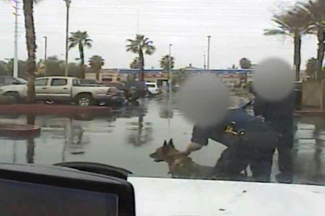 Confusion Language Barrier Contribute To Henderson Police Dog