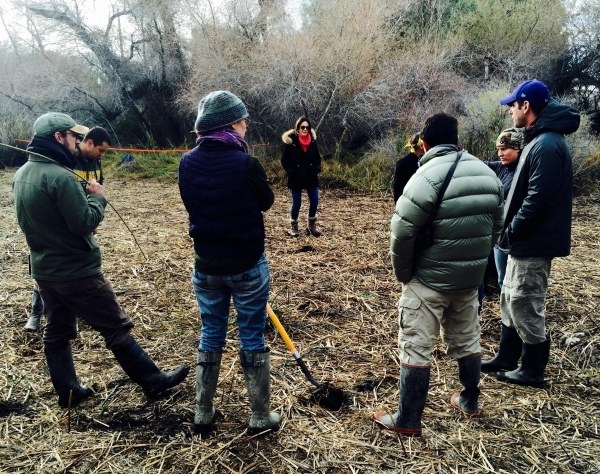 Susan Sorrells, center rear, tours a marsh on her property in Shoshone, Calif., in December that is being turned into habitat for the endangered Amargosa vole. (Photo courtesy Amargosa Conservancy)