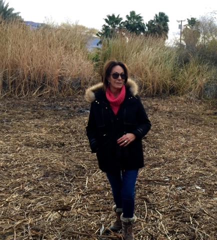 Susan Sorrells tours a marsh on her property in Shoshone, Calif., in December that is being turned into habitat for the endangered Amargosa vole. (Photo courtesy Amargosa Conservancy)