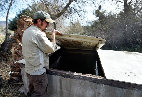 Amargosa Conservancy executive director Patrick Donnelly checks the water level of a spring fed water collection box that will support a new habitat that the conservancy is creating for the now en ...