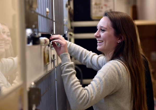 Alison Gentler smiles as she plays with a cat at a Petland store Monday, Jan. 4, 2016, in Las Vegas. The City of Las Vegas will consider a possible ban on the retail sale of many cats and dogs dur ...