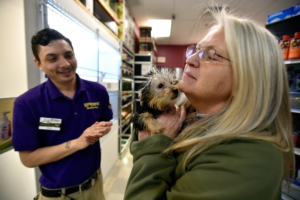 Claudia Kroll, right, holds a silkie terrier puppy as pet counselor Mike Picaso looks on at a Petland store Monday, Jan. 4, 2016, in Las Vegas. The City of Las Vegas will consider a possible ban o ...