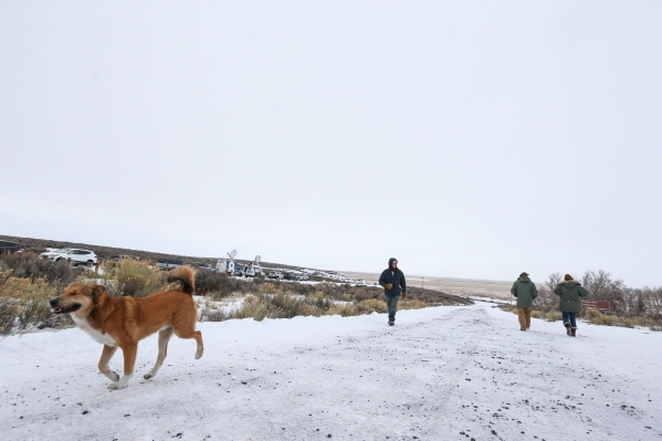 Anti-government protestor Michael Stettler of Christmas Valley, Ore., left, walks with his dog Volffie by the entrance of the Malheur National Wildlife Refuge headquarters, which the group is occu ...