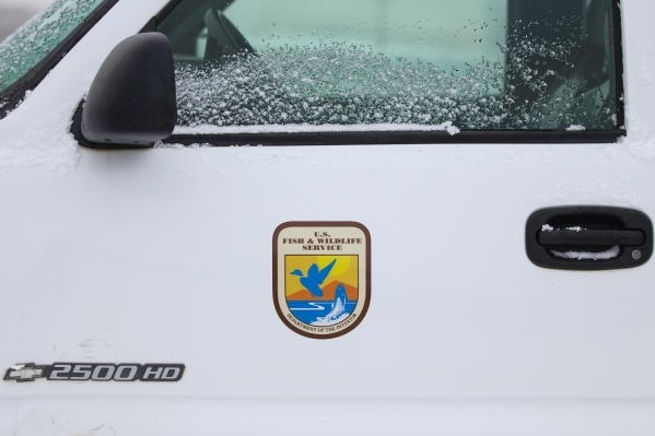 A U.S. Fish & Wildlife Service truck is shown at the entrance to the Malheur National Wildlife Refuge headquarters, occupied by anti-government protestors, near Burns, Ore. on Thursday, Jan. 7 ...